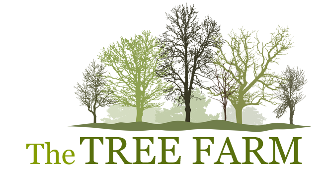 The Tree Farm logo